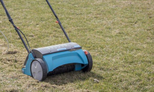 Comment bien scarifier sa pelouse ?