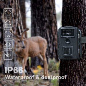 camera de chasse coolife waterproof