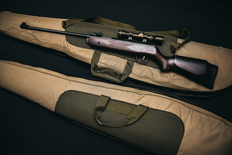 catégorie arme chasseur